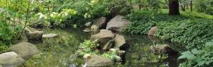 Meditation Spot